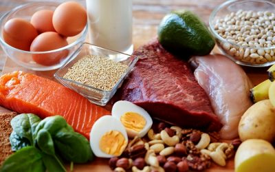 What About A High Protein Diet? … What Is Considered Healthy?